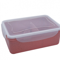 ECO LUNCH BOX WITH DIVIDER S40083-1