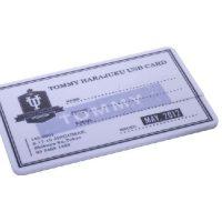 USB Flash Drive Card Series VDK-002-2